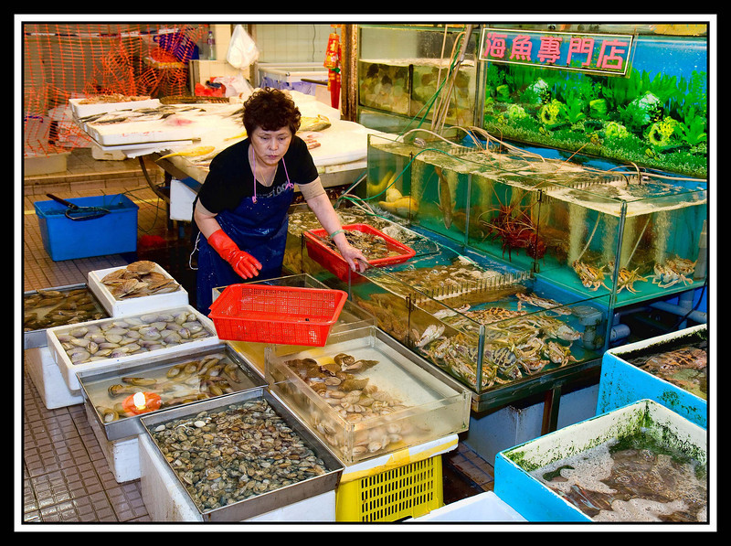 IMAGE: http://rpcrowe.smugmug.com/Travel/China-Focus-Tour-2010-Hong/Food-Market-fish-tanks/859065552_d8d4T-L.jpg